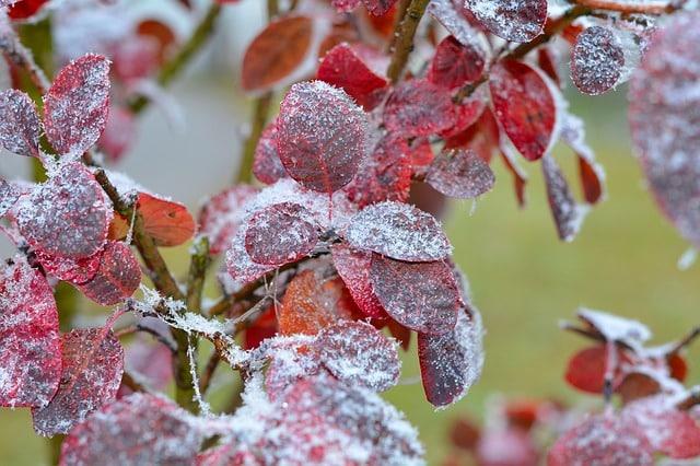 alt afrontar el frio en casa rural